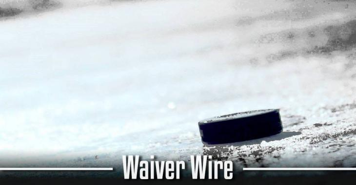 14 players hit the NHL waiver wire on Saturday.